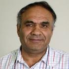 Amin Saikal Amin Saikal