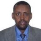 afyare elmi Afyare A. Elmi